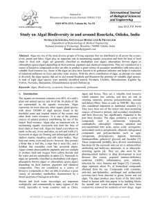 Study on Algal Biodiversity in and around Rourkela, Odisha, India