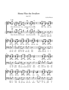 home flies the swallow - Full Score
