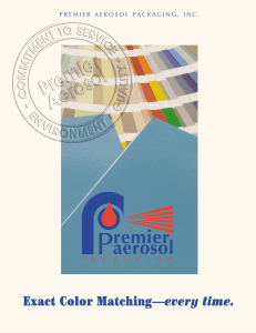 Premier Aerosol Touch Up Paint