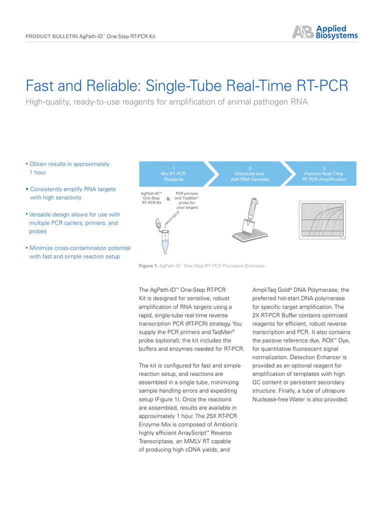 Fast and Reliable: Single-Tube Real-Time RT-PCR
