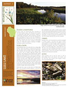 SE-6 Lulu Lake - Wisconsin Wetlands Association