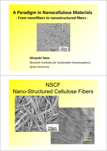 NSCF Nano-Structured Cellulose Fibers