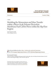 Modeling the Momentum and Mass Transfer within a Micro