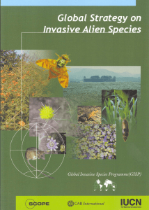 Global Strategy on Invasive Alien Species. IUCN, Gland