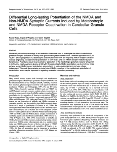 Differential Long-lasting Potentiation of the NMDA and Non