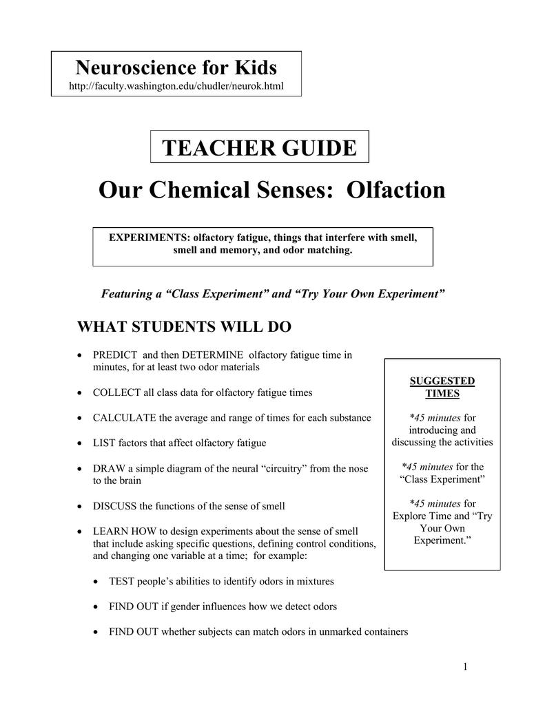 Our Chemical Senses: Olfaction