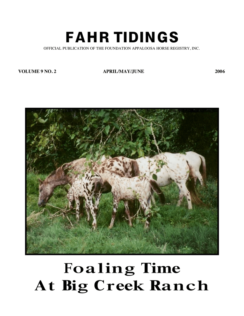 FAHR TIDINGS Foaling Time At Big Creek Ranch