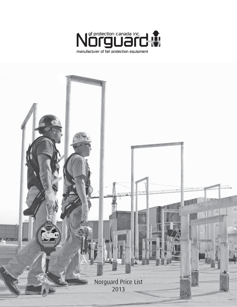 Guardian Fall Protection 61142 Residential Guardian with 1 bracket and 1 post