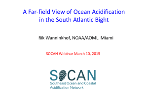 A Far-field View of Ocean Acidification in the South Atlantic Bight