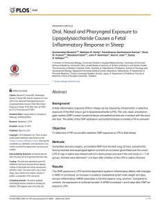 Oral, Nasal and Pharyngeal Exposure to Lipopolysaccharide