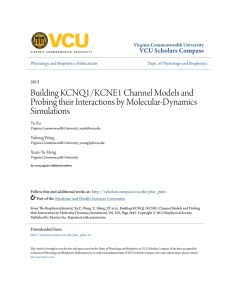 Building KCNQ1/KCNE1 Channel Models and Probing their