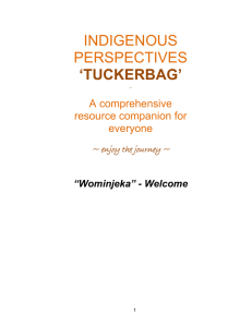 indigenous perspectives `tuckerbag`