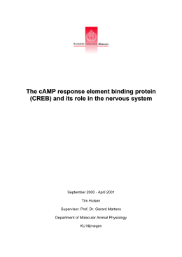 The cAMP response element binding protein (CREB) and its