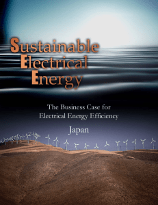 The Business Case for Electrical Energy Efficiency in Japan
