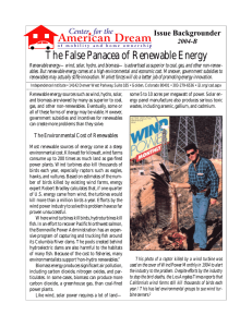 The False Panacea of Renewable Energy