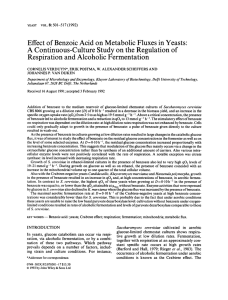 Effect of benzoic acid on metabolic fluxes in yeasts
