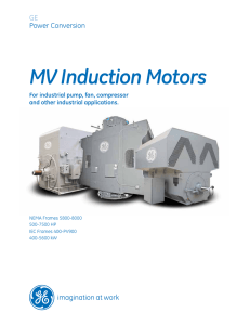 MV Induction Motors
