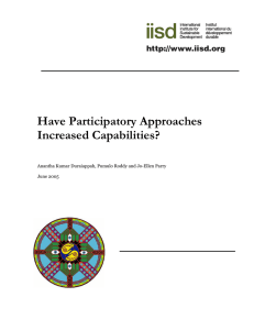 Have Participatory Approaches Increased Capabilities?