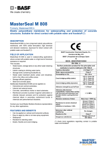 MasterSeal M 808