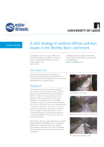 A pilot strategy to address diffuse pollution issues in