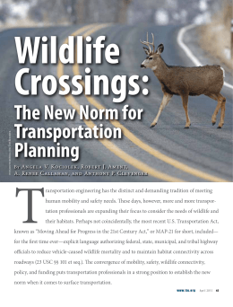 The New Norm for Transportation Planning