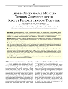 Three-Dimensional Muscle- Tendon Geometry After Rectus