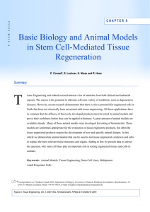 Chapter 9: Basic Biology and Animal Models in Stem Cell