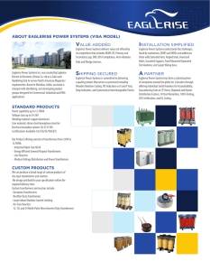 about eaglerise power systems (visa model) standard products