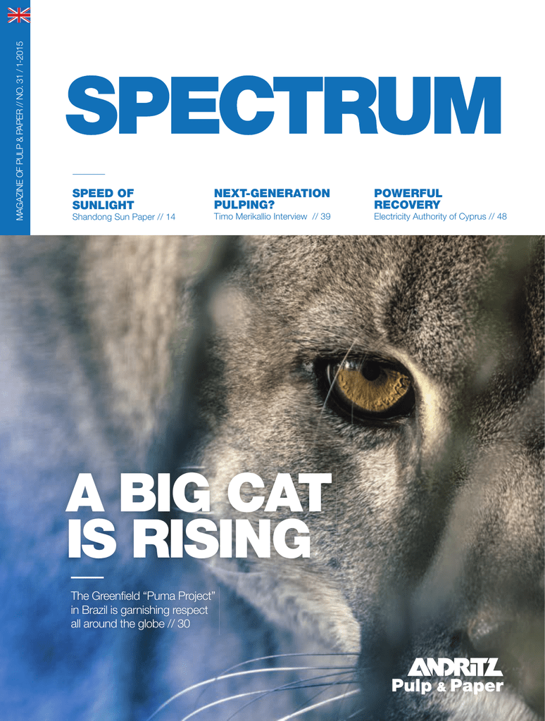 PDF Issue 31