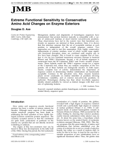 Extreme Functional Sensitivity to Conservative Amino Acid Changes