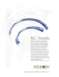 rc needle flyer 1/00 v2