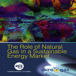 The Role of Natural Gas in a Sustainable Energy