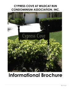 Cypress Cove Informational Brochure