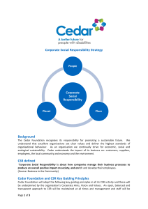 CSR Strategy 2012 - The Cedar Foundation