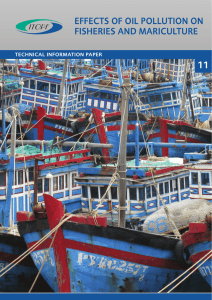 effects of oil pollution on fisheries and mariculture