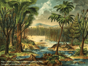 http://www.sciencebuzz.org/sites/default/files /images/carboniferous