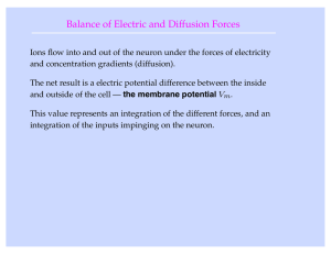 Balance of Electric and Diffusion Forces