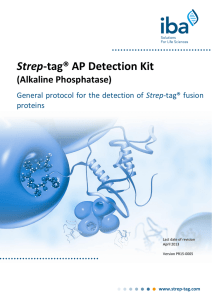 Strep-tag® AP Detection Kit