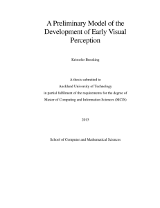 A Preliminary Model of the Development of Early Visual Perception