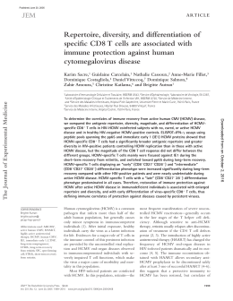 Repertoire, diversity, and differentiation of specific CD8 T cells are