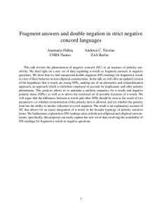 Fragment answers and double negation in strict negative concord