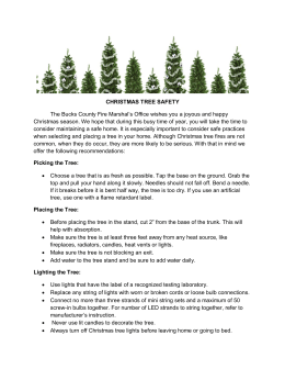 CHRISTMAS TREE SAFETY The Bucks County Fire Marshal`s Office