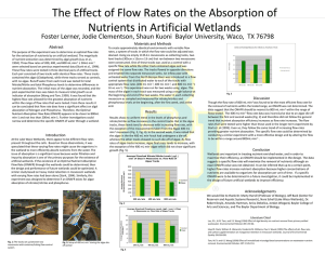 The Effect of Flow Rates on the Absorption of
