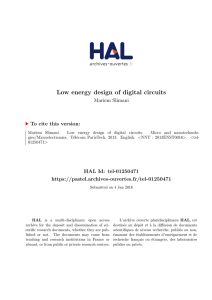 Low energy design of digital circuits - Pastel
