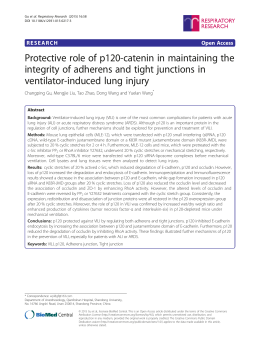 Protective role of p120-catenin in maintaining the integrity of