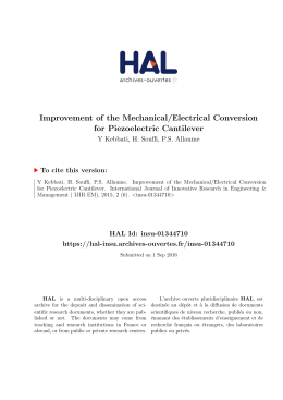 Improvement of the Mechanical/Electrical Conversion - INSU