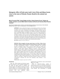 Mutagenic effect of fresh water (well, rivers Ficha and Minas Gerais
