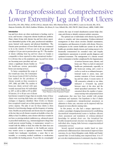 A Transprofessional Comprehensive Assessment Lower Extremity