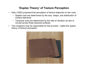 `Duplex Theory` of Texture Perception